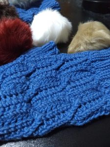 Quadrotriticale Mitts with some 'tribble' pom-poms